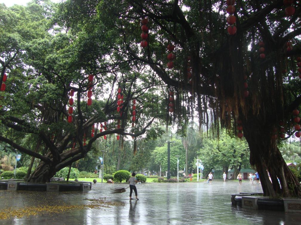 At Liwan Lake